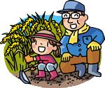 親子で稲刈り